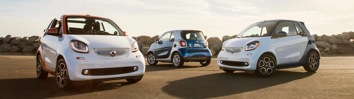 Smart electric St Barts